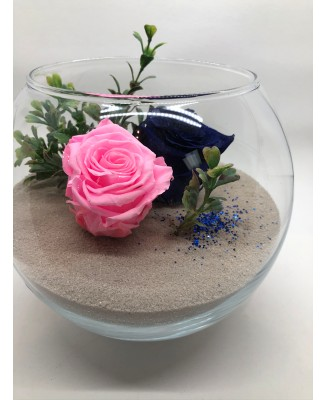 Pink and blue mounting with 2 eternal roses